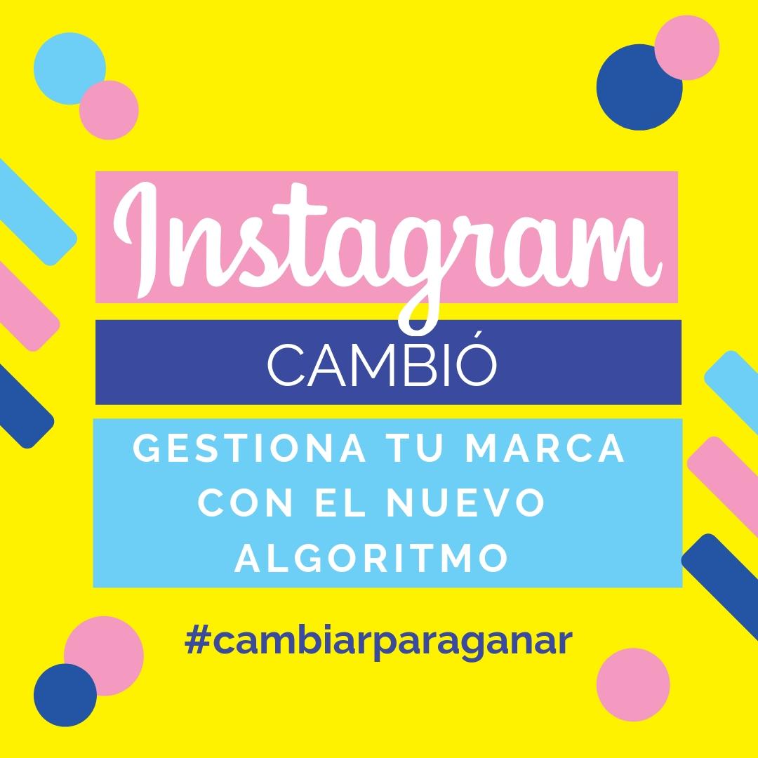 Instagram cambió, gestiona tu marca y vence al nuevo algoritmo
